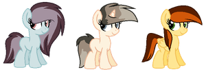 Filly Adopts by Amazing-Max