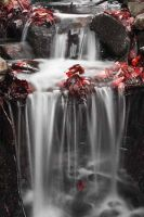 Waterfall nr Keswick by AlexWelsh