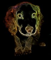 Cute Neon Puppy by sazzyarmani