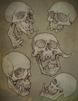 Skulls2 by JulioNicoletti