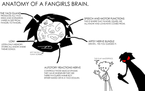 ANATOMY OF A FANGIRLS BRAIN by GPCI
