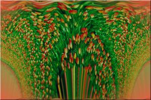 Distorted Tulip Fields by floydian1987