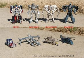 Tiny Transformer repaints by Unicron9