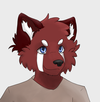 Linus the Red Panda by afoxen