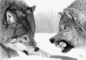 Hungry Wolves by Tobias20
