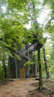 Thorncrown Chapel by wolf74145