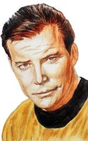Captain James T. Kirk by HeavenhairSixes