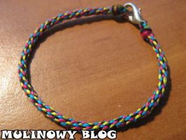 A kumihimo bracelet with a fastening by Panna-Kot