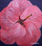 Hibiscus by kasarndesigns