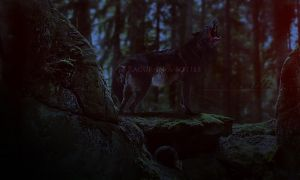 My songs know what you did in the dark, by raqinq
