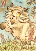 ACEO cat playing by vrm1979