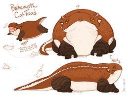 Behemoth Cat Toad by Aviator33