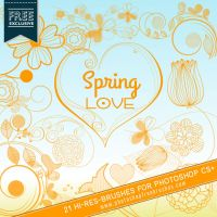 21 High-Res Spring Flowers and Swirls Brushes by fiftyfivepixels