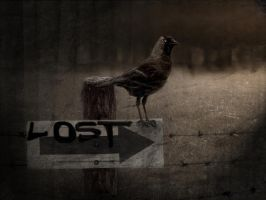 lost by DogAngel