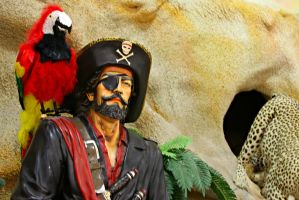 Pirate and Macaw 2 by SnapColorCreations