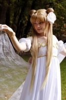 Princess Serenity: Graceful by Cepiapon