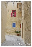 Malta Mdina by Digitalbaby