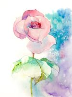 watercolor practice [flower] by young920