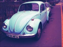 The Beetle by Sk1zzo
