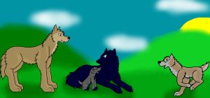 Contest Entry Wolf's Rain by lolpeaceoutlol