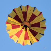Up Up And Away by cindy1701d