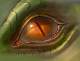 Dragon Eye by SulaMoon