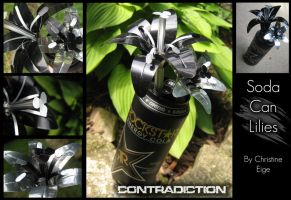"Soda Can ""Contradiction"" Full by Christine-Eige"