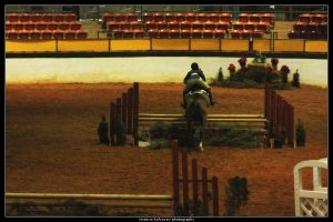 Winter I Show 1 by blondy0262