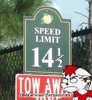 Speed Limit Not Approved by Arbok-X