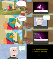 Perry is a brony comic by Trainrider626