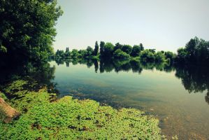 Berges by AuroraxCore