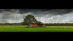 Some Place by lomax-fx