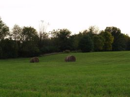Bales by SolStock