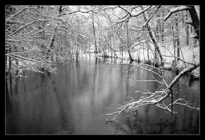 Midwinter by eswendel