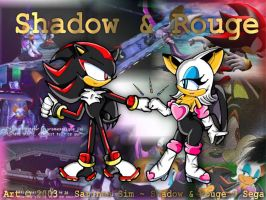 Shadow And Rouge - Team Work by sarin15