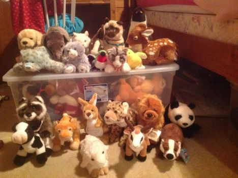 My Current Webkinz Collection by spottedtime