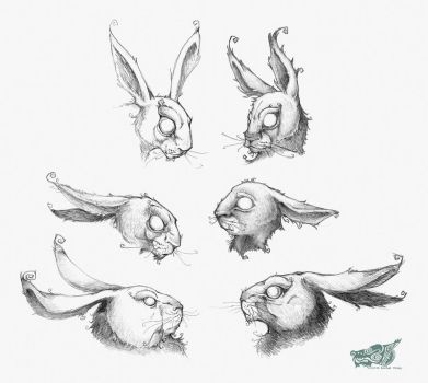 ...And Rabbits by rgyoung