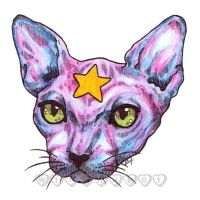 Star Cat by witchhboy