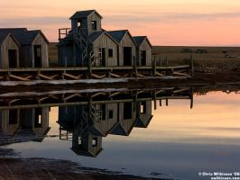 Perfect Reflections by cwilkinson