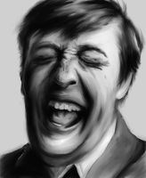 Stephen Fry 2 by Hockypocky