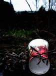 coke cup, litter, environment by assignation