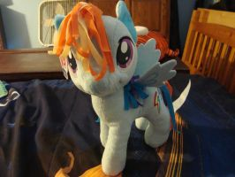 My new Rainbow Dash Plushy by spidyphan2