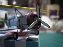 Curtiss SBC-4 Helldiver Nose Detail by gomidefilho