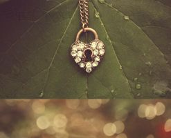 P a s s i o n by EclipxPhotography