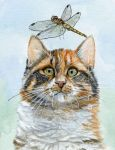 Calico cat and dragonfly by sschukina