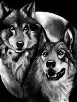 Wolf Pack Bros by kayleighmc