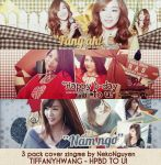 PACK COVER - HPBD TO FANY #2 by NekoNguyen