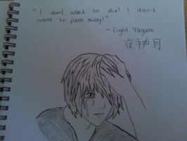 Light Yagami - The End by cathy416