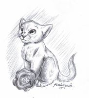 Kitten and a rose for Anarlai by KoudoawaiaVortex