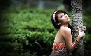 beauty of nature by ycksuryadi